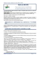 MIZOËN PVCM 20201209